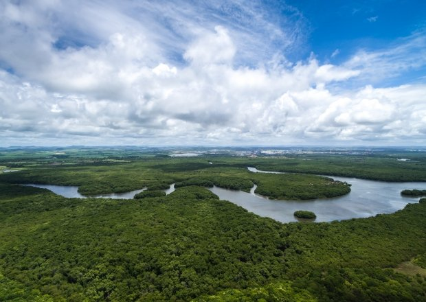Aerial Photo of the Brazilian Amazon