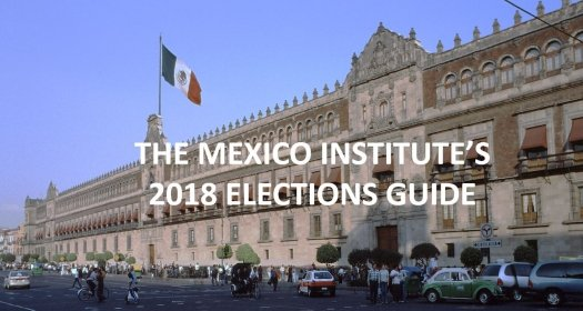 Elections Guide Banner