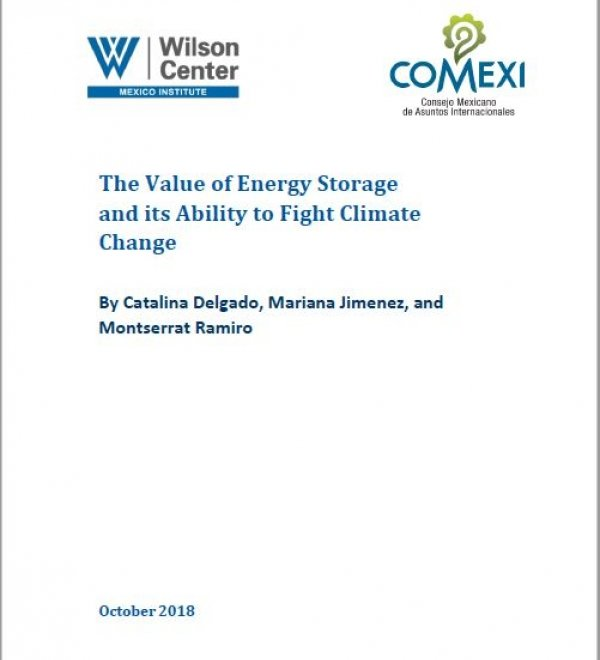 The Value of Energy Storage and its Ability to Fight Climate Change