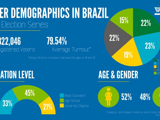 Voter Demographics in Brazil