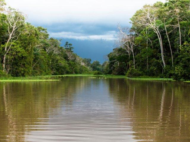 The Scientific, Social, and Economic Dimensions of Development in the Amazon