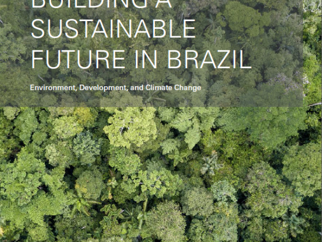 Image - 2020 Sustainable Brazil report cover