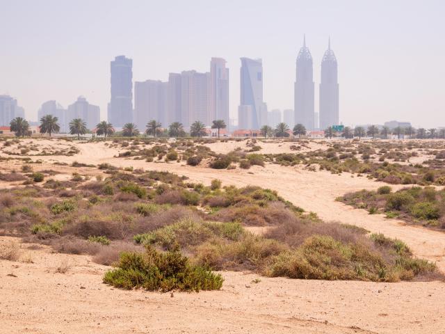 Jumeirah Beach, UAE
