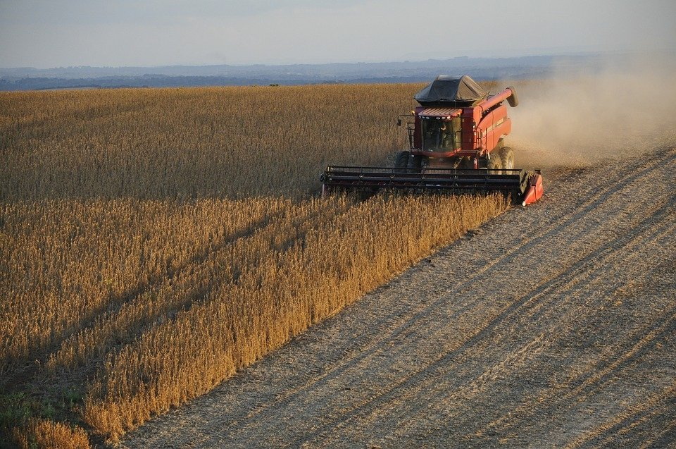 Agriculture Sector Gives Brazil Hope in 2017