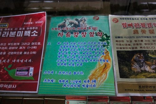 Medical flyers and advertisements in North Korea.