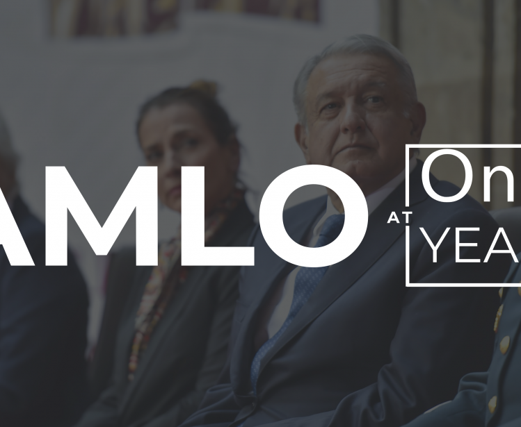 AMLO's Popularity: The First Year