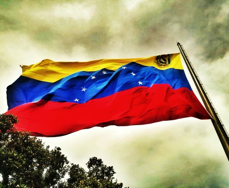 Democracy Imperiled:  Venezuela and the Collapse of Democratic Institutions