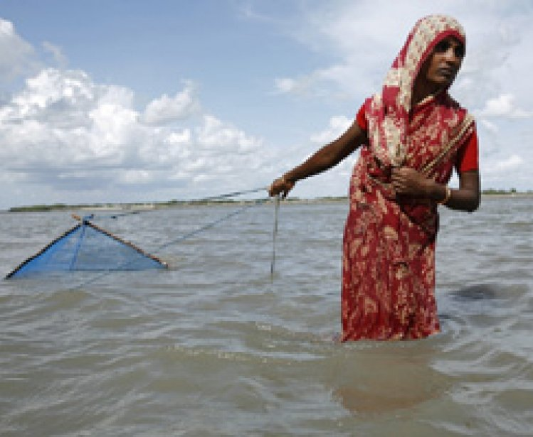 Perfect Storm? Population Pressures, Natural Resource Constraints, and Climate Change in Bangladesh