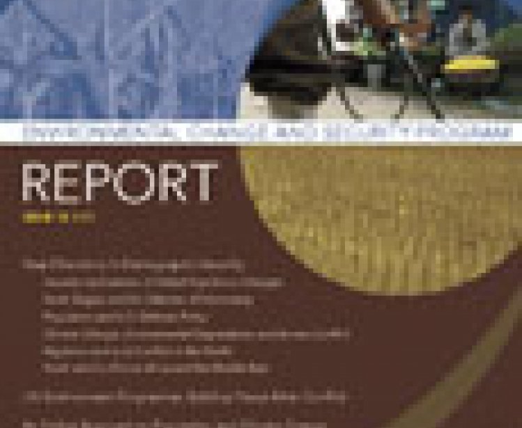 ECSP Report 13: Cover and Table of Contents