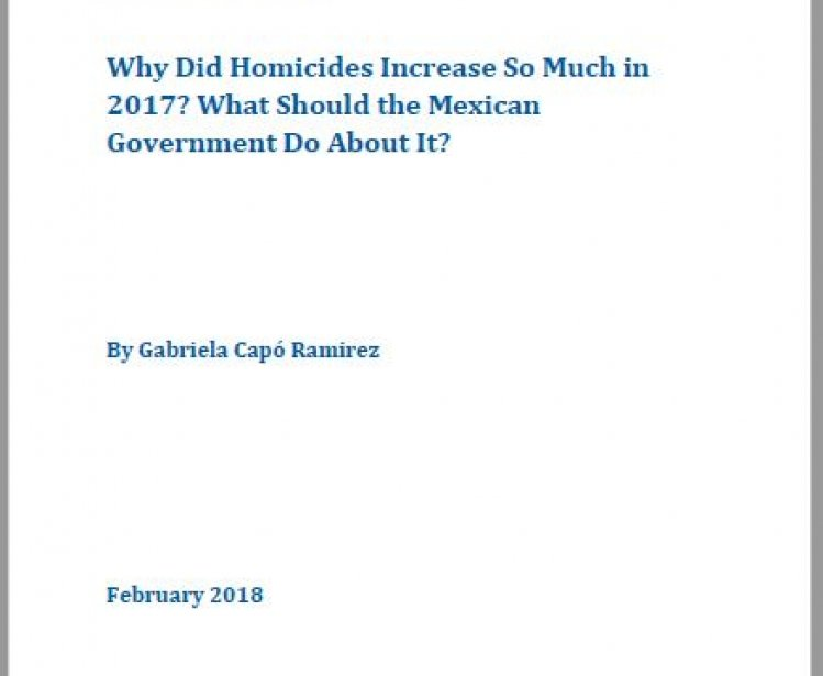 Why Did Homicides Increase So Much in 2017? What Should the Mexican Government Do About It?