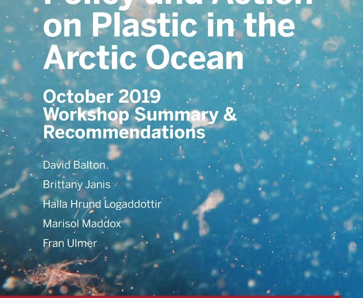 Report Cover: Plastic Pollution