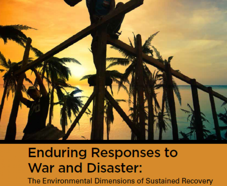 Enduring Responses to War and Disaster: The Environmental Dimensions of Sustained Recovery