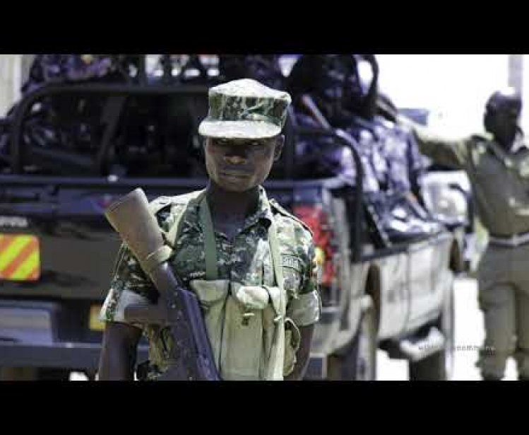 Countering Transnational Organized Crime in East Africa
