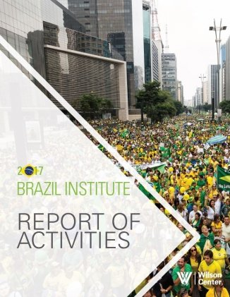 Brazil Institute Annual Report 2017
