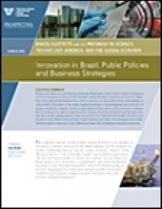 Brazil's Innovation Challenge: Public Policies and Business Strategies