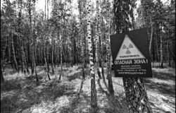 Commemorating Chernobyl: 20 Years Later