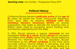Guilherme Boulos - Candidate Bio