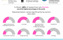 Brazilian Women in STEM