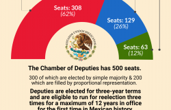 Infographic   2018 Mexican Election Chamber of Deputies Results