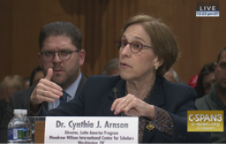 U.S.-Venezuela Relations and the Path to a Democratic Transition: Cynthia Arnson Testifies before Senate Foreign Relations Committee