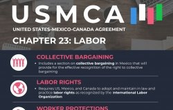 Infographic | USMCA Chapter 23: Labor
