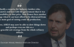 Director Duncan Wood Responds to Mexico Refinery Decision