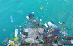 Citizen Science and Data Integration for Understanding Marine Litter