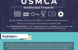 Infographic | USMCA Intellectual Property