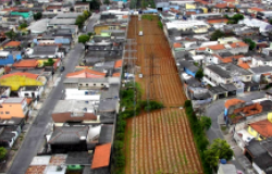 How Brazilian Cities are Boosting Sustainable Agriculture