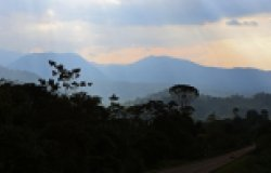 Development Banks and Sustainable Development in the Tropical Andes