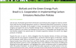 Event Summary: Biofuels and the Green Energy Push: Brazil-U.S. Cooperation in Implementing Carbon Emissions Reduction Policies