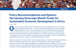 Policy Recommendations and Options: Harnessing Sovereign Wealth Funds for Sustainable Economic Development in Africa