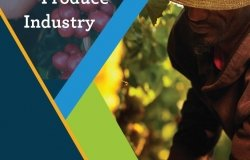 Farm Labor and Mexico's Export Produce Industry