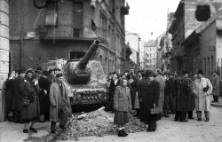 Eyewitness to the 1956 Hungarian Revolution