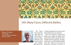 ISIS: Many Faces, Different Battles