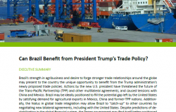 Event Summary: Can Brazil Benefit from President Trump's Trade Policy?