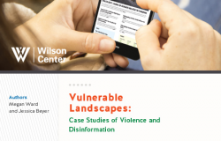 Vulnerable Landscapes: Case Studies of Violence and Disinformation