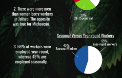 2018 Berry Worker Survey