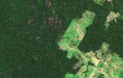 Satellite image of deforestation in Carajas, Brazil (2016).