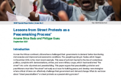 Lessons Street Protests SVNP Publication Cover