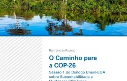 BI Portuguese Cover from Brazil-US Dialogue Meeting Report 1