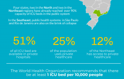 Healthcare Inequality and the COVID-19 Pandemic in Brazil