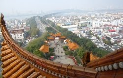View from atop Chinese tower overlooking tree-lined corridor in Wuhan City