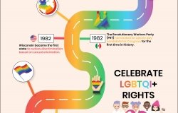 Infographic pride Mexico Institute