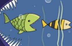 big fish eats small fish