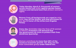Day Without Women in Mexico Infographic