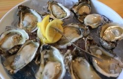 Plate of cooked oysters