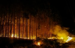 Amazon fires near Brazil highway
