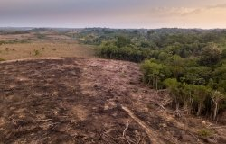 Drone aerial view of deforestation in the Amazon rainforest