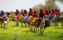 Chad women traveling to find clean water in Abeche, Chad
